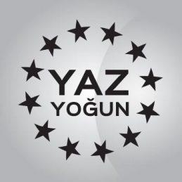ingilizce kurslari yaz yogun kurslari