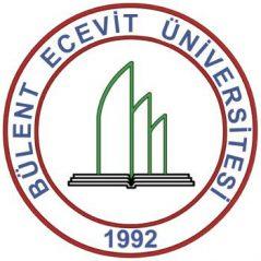 Bülent Ecevit Üniversitesi Hazırlık Atlama Kursları